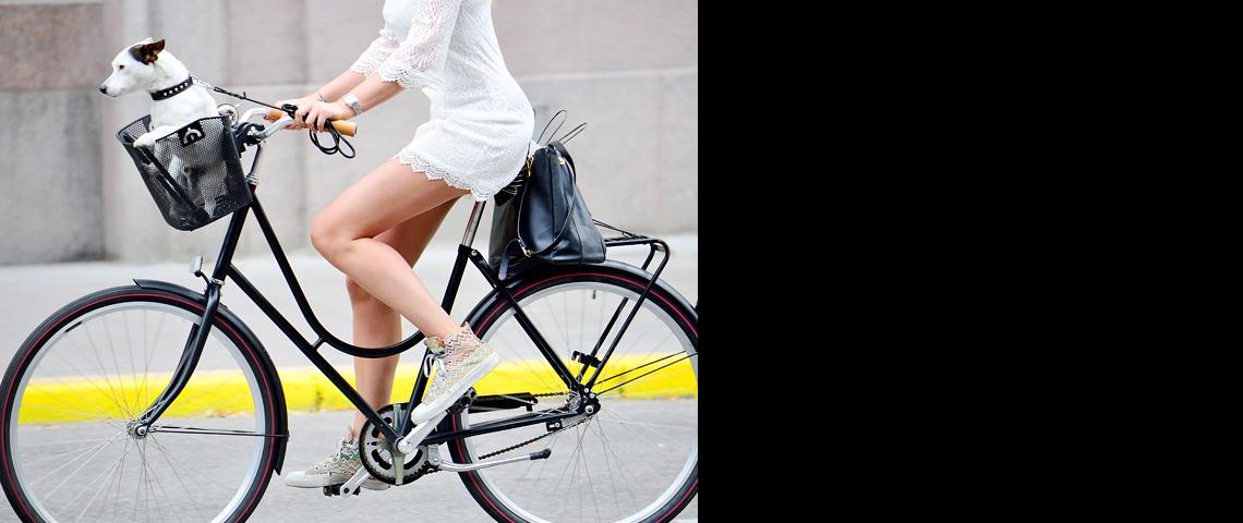 szczupła dziewczyna w sukience wiezie w rowerowym koszyku małego psa